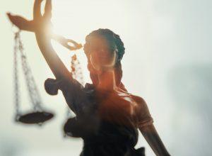 1. Civil Litigation